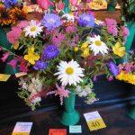 dufftownflowershow2015044